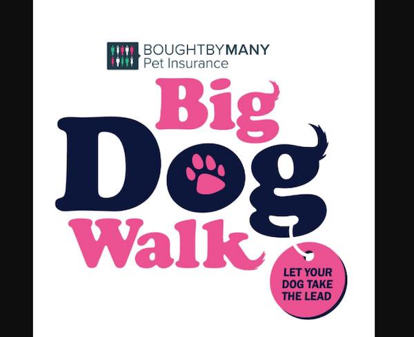 Big Dog Walk