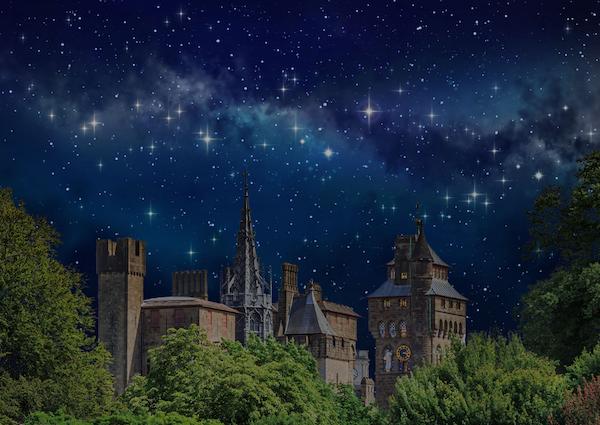 Live Under The Stars
